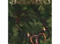 dark-ages-werewolf